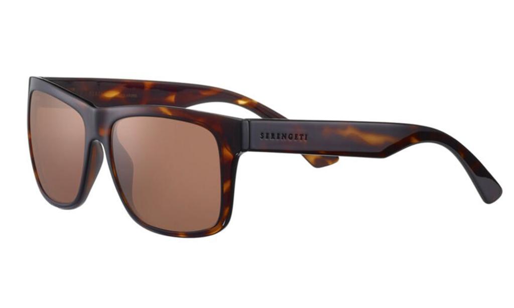 Positano-8371---Dark-Tortoise-Shiny---youoptics